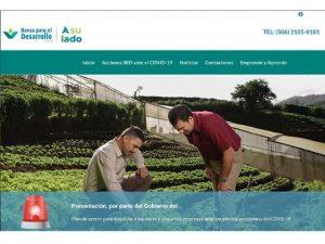Comdigital - Desarollo Web Entregado, cliente Banca para el Desarrollo